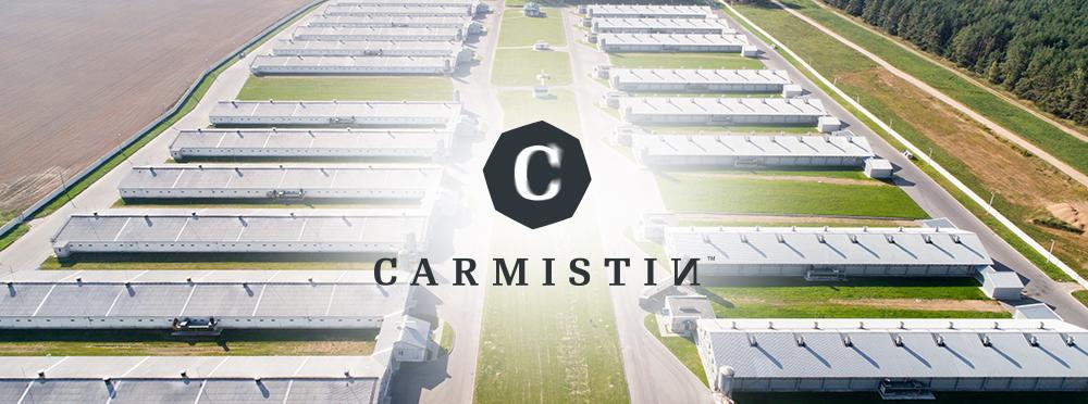 Grupul Carmistin investește 8 milioane de euro în proiectul de modernizare și repunere în funcțiune a fostelor ferme Piscani, din Scornicești, județul Olt