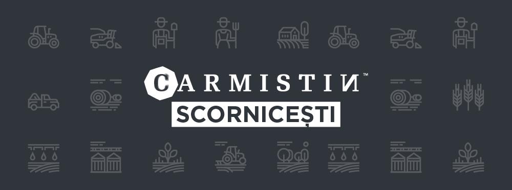 Carmistin International își menține interesul față de posibilitatea de concesionare sau cumpărare a terenurilor situate pe raza localității Scornicești